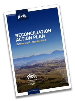 noetic-reconciliation-plan-cover